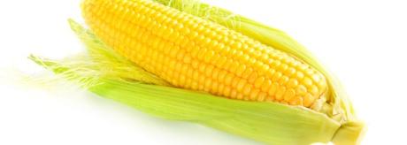 Der Mais ist heiß