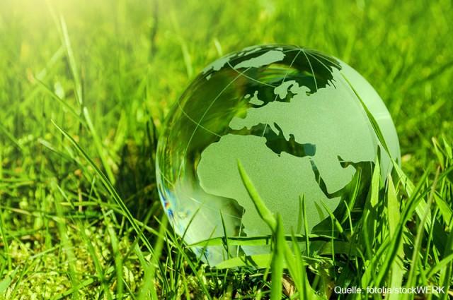 Regenerative Energien überzeugen Anleger