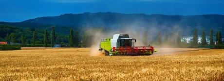 Agrarwirtschaft klein
