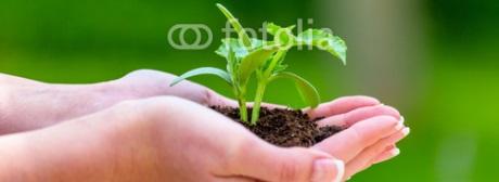 Nachhaltigkeit klein
