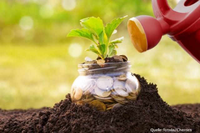 Vermögensverwaltung in Form eines ETF