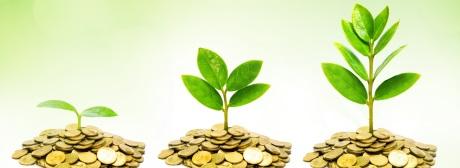 Nachhaltigkeit Rendite klein