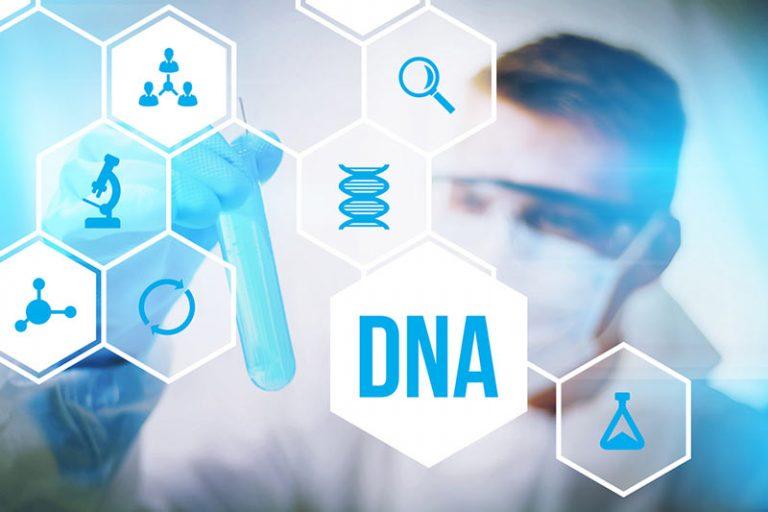 Der Biotech-Sektor dürfte auf Erfolgskurs bleiben