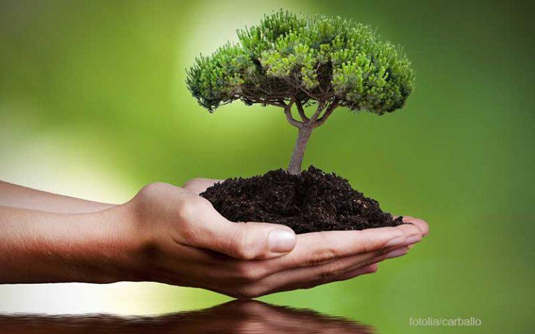 Nachhaltigkeits-ETF