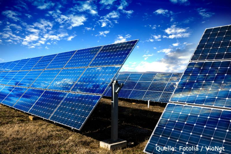 Solarbranche