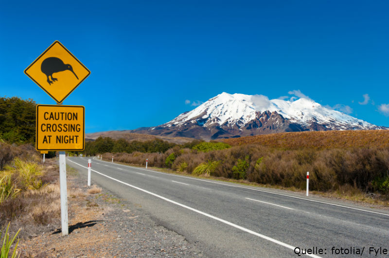 Neuseeland-ETF – Paradiesische Renditen