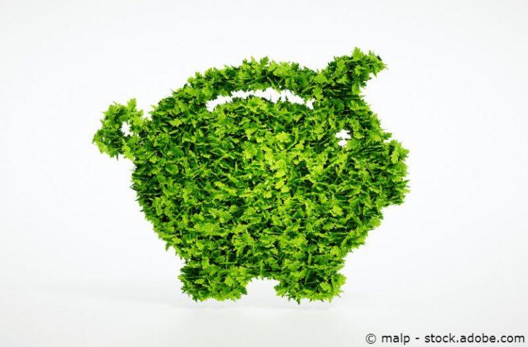 """Nachhaltigkeits-ETF: """"Doppelte Rendite"""" mit grünen Anlagen"""