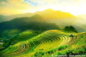 Vietnam-ETF: Mit Vollgas ins neue Jahr