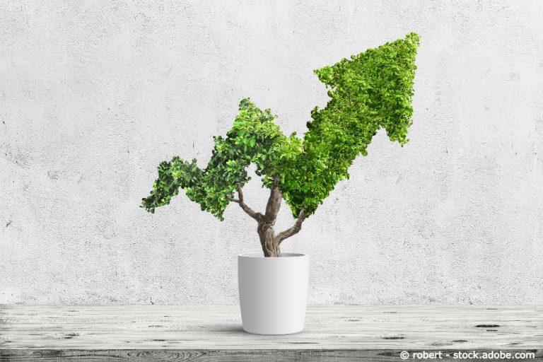 Nachhaltigkeits-ETF: Unvorhergesehene Risiken im Griff