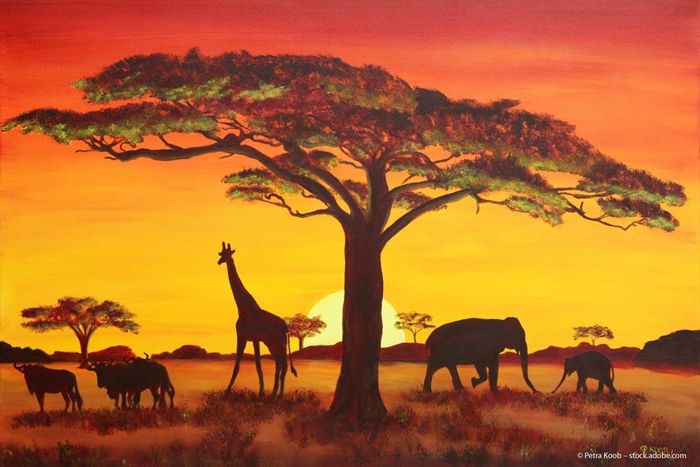 Afrika-ETF: Wieder auf der Investment-Landkarte