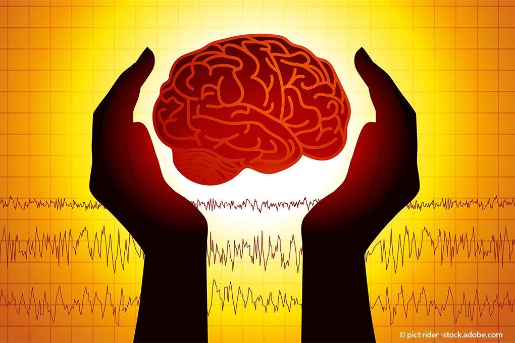 Gehirn-Index