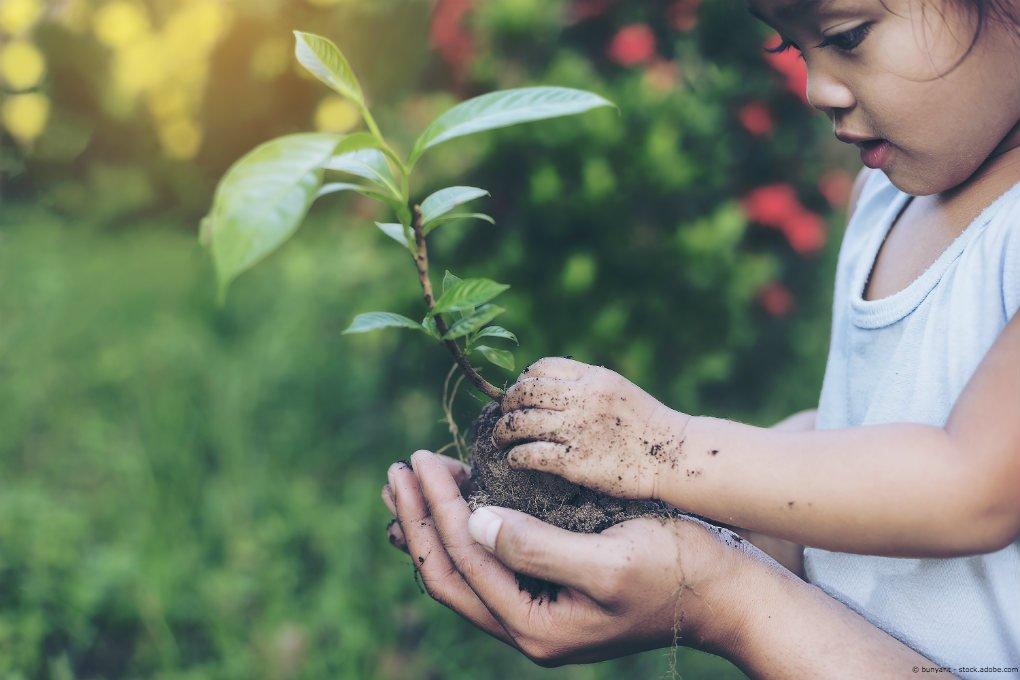 Investieren in nachhaltige Indexkonzepte mit finvesto