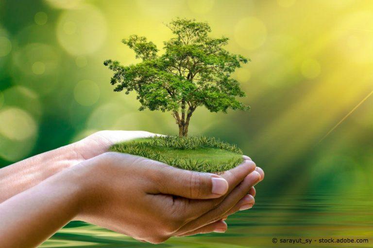 Nachhaltigkeit gross neu