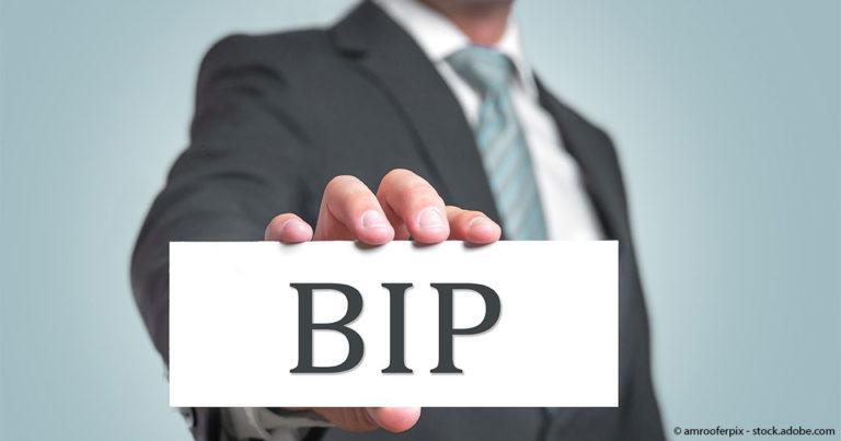 BIP-Gewichtung