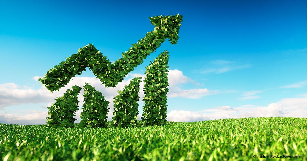 steigende-Bedeutung-nachhaltiger-Investments