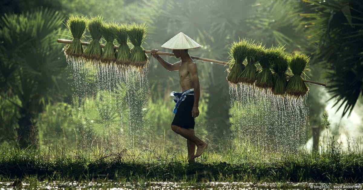 Vietnam-ETF mit Potenzial