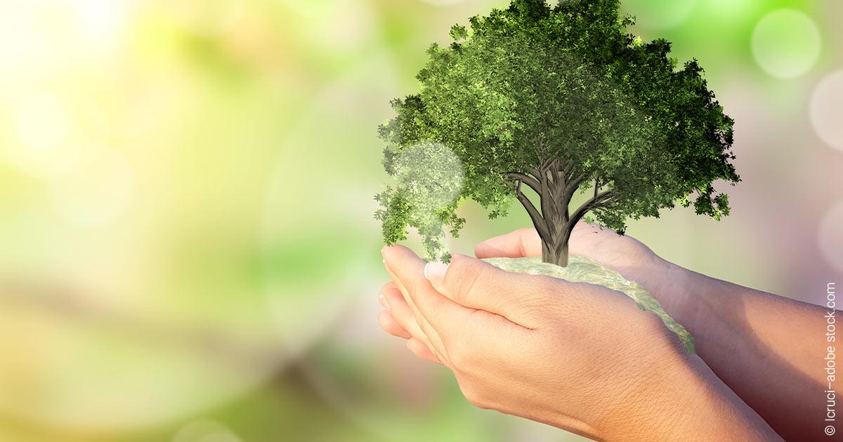 ESG als Renditetreiber: Darum performen nachhaltige Fonds so gut.