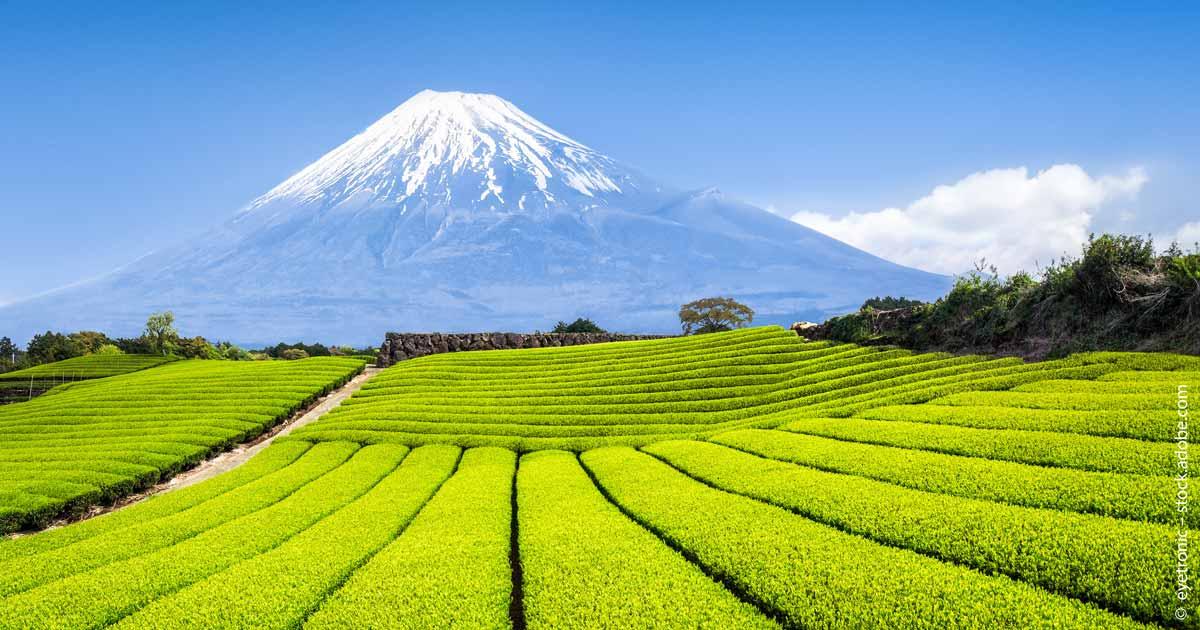 Neuer-ESG-ETF-Japan-Amundi