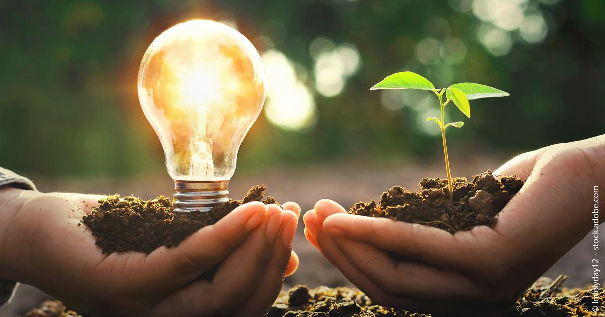 Erneuerbare-Energien-ETF: Gekommen, um zu bleiben.